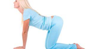 Bài tập yogae Cat Pose